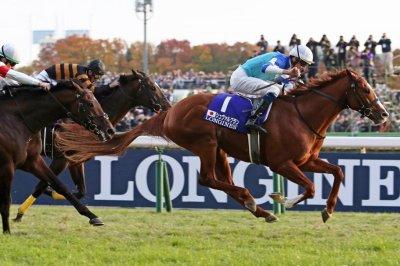 Japan Cup tops weekend horse racing agenda; Bahrain steps into racing limelight