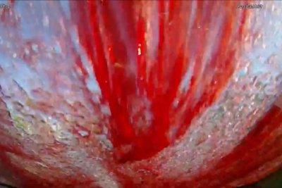 Car-top wine spill creates horror movie scene on dashcam