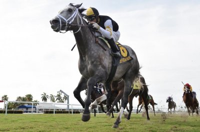 Laudia Sion wins in Japan, Halladay in Florida, as horse racing slowly returns