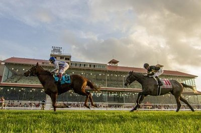 Trio of Grade I races at Santa Anita headlines weekend Thoroughbred racing