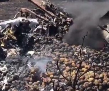 California truck crash cooks load of pineapples