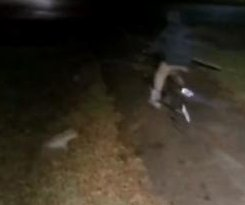 Chihuahua chases off attempted burglar in Texas