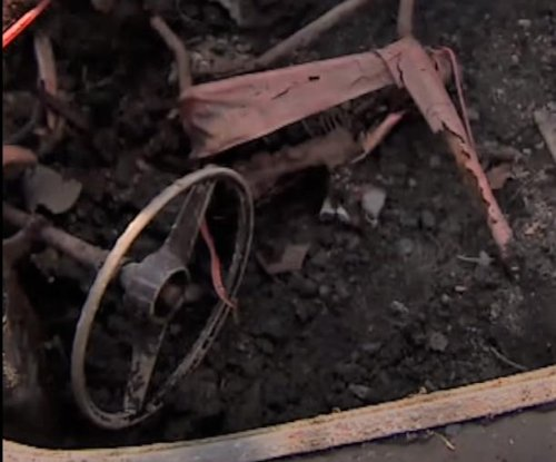 Man working in garden finds car buried in his yard