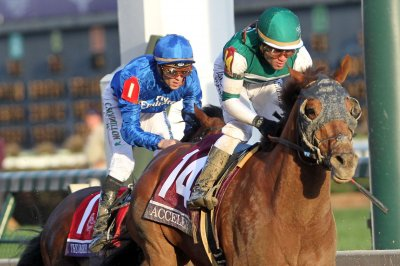 Breeders' Cup: Accelerate emerges from furious battle to wire