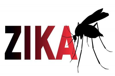 Zika-bearing mosquitoes more widespread in U.S. than expected