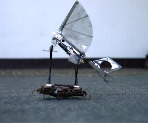 Robotic bird takes flight from back of robot roach