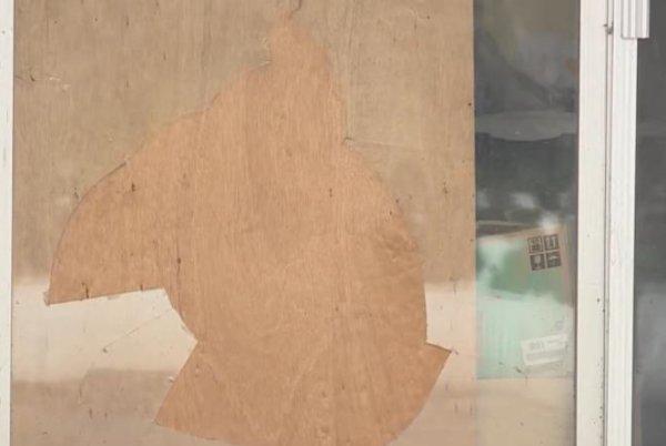 WATCH:Mountain lion breaks into Utah home
