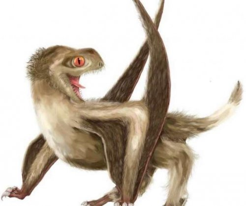 Feathers originated 70 million years earlier than scientists thought