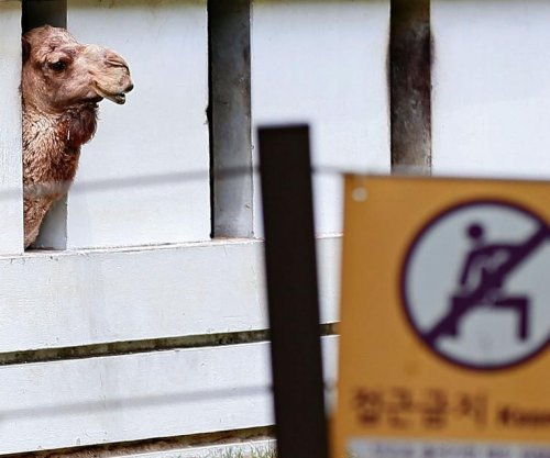South Korea gripped by fear of MERS coronavirus