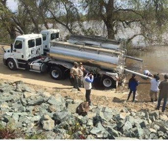 1M chinook salmon released after Oroville emergency rescue