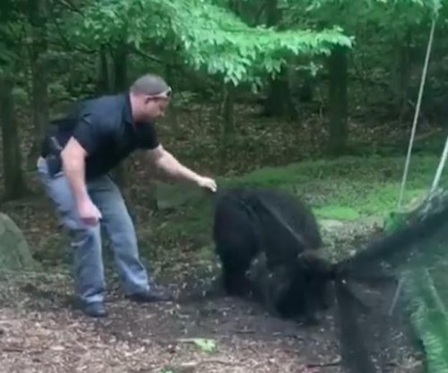 New Jersey police rescue large bear cub from batting cage netting