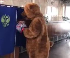 'Bear' casts ballot in Russian presidential election
