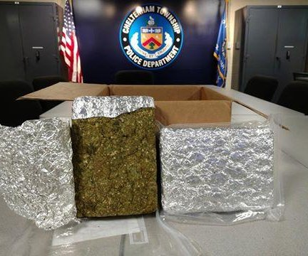 Pennsylvania police invite owner of 'lost' marijuana to 'stop by the station'