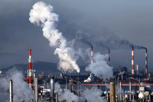 EIA: OPEC oil revenue down nearly 50 percent
