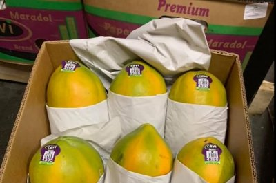 CDC: Salmonella outbreak likely linked to papayas brand