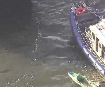 Taxi boat, kayaks collide on Hudson River; one person critically injured