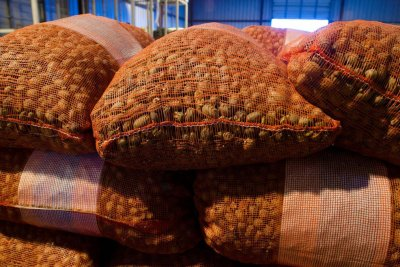 Ailing U.S. pecan industry calls on India to reduce tariffs