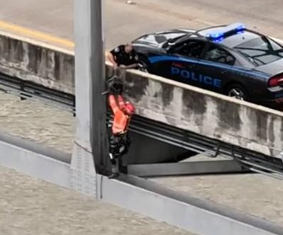 Watch: Bridge inspection crew rescues stranded dog