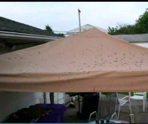 Party pooped: Feces rains on Pennsylvania sweet 16
