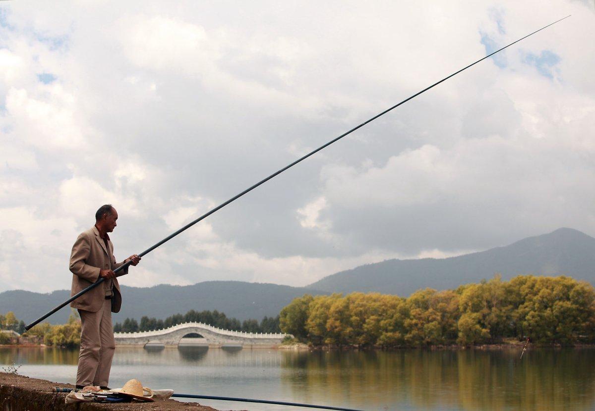 Freshwater fish hobby - Freshwater Fish Hobby