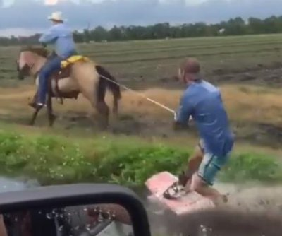 Florida man wakeboards through flooded ditch while being pulled by horse