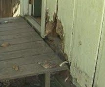 Bear claws through siding to get into Tennessee home