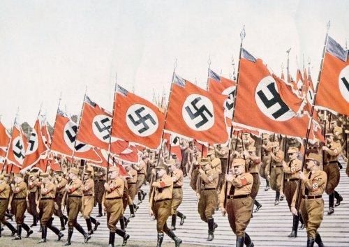Scottish YouTuber guilty of hate speech for teaching dog 'Nazi salute'