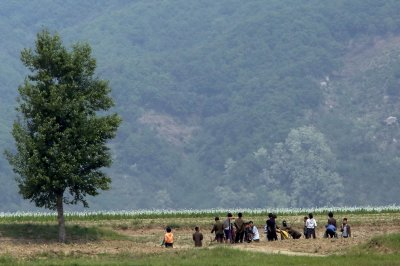 Knife fights, market forces changing North Korea 'self-criticism' sessions