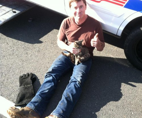 New Jersey police rescue kitten from highway median