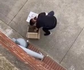 Apartment residents use pulley system to retrieve pizza from driver