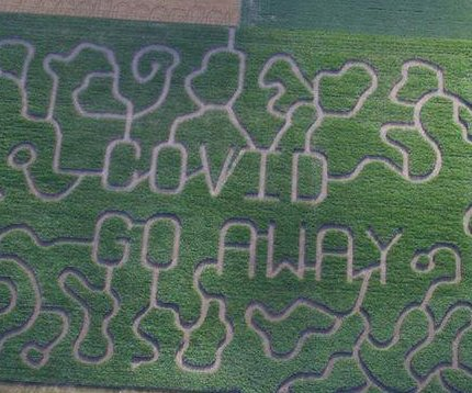 Michigan farm's 12-acre corn maze spells out 'COVID GO AWAY'
