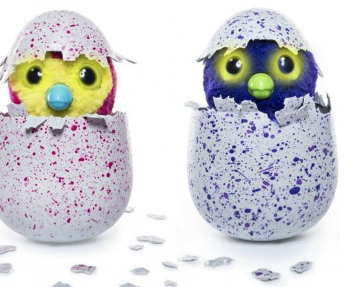 Parents say Hatchimals not hatching, are swearing
