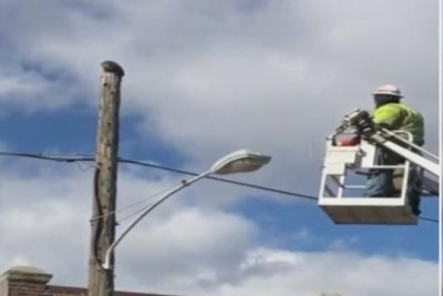 Watch:-Man-suspended-for-using-bucket-truck-in-cat-rescue