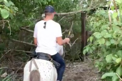 Patriots' Tom Brady wields machete on horseback in Costa Rica