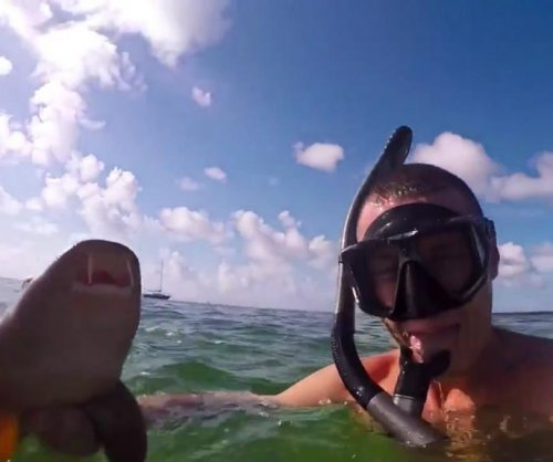 Snorkler catches sharks with his bare hands off Florida Keys