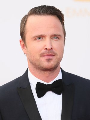 Aaron Paul could star in screen adaptation of 'The Dark Tower'