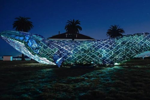 Life-size whale breaks record for largest recycled plastic sculpture