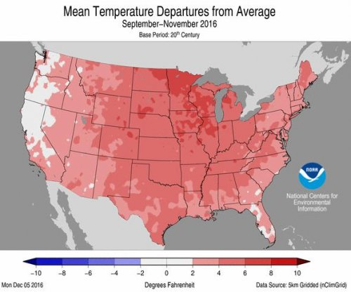 November was second warmest on record in U.S.