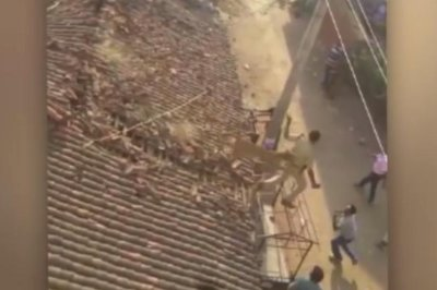 Indian forest ranger jumps off house roof to dodge leopard attack