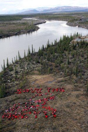 Alaska awards oil and gas leases near ANWR