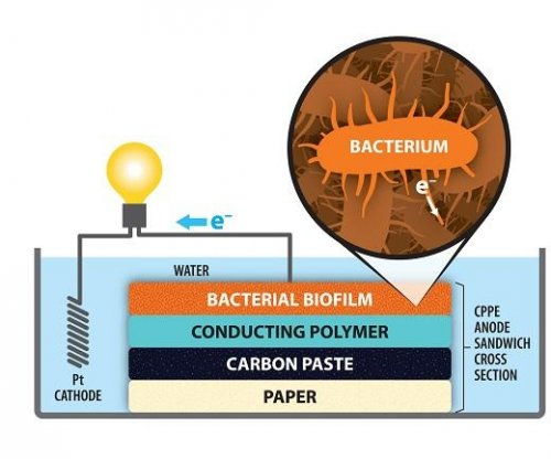 New bacterial fuel cell uses paper electrode