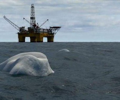 Statoil cleared for Barents Sea exploration