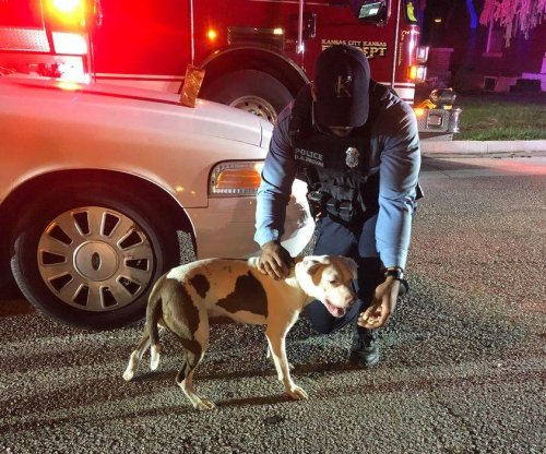 Kansas police praise dog for getting help for owner during emergency
