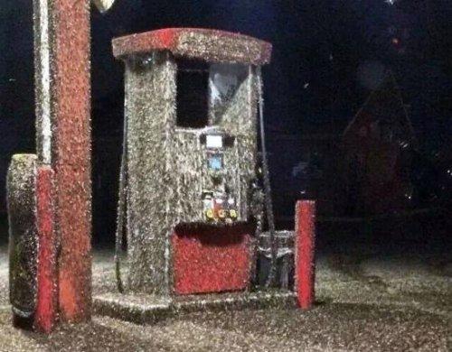 Massive Wisconsin mayfly hatch shows up on radar