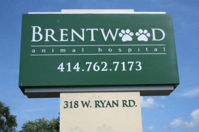 Dog escapes Wisconsin animal hospital, walks home