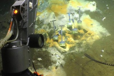 Scientists find microbes eating ethane spewing from deep-sea vents