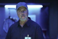 'CSI Vegas' star William Petersen relishes return to science role