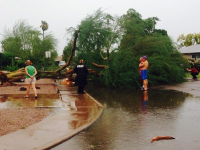 Phoenix storms bring floods, close airport