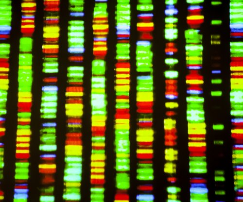 Scientists discover how and when DNA replicates