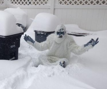 'Boston Yeti' prowls suburban streets, authors tweets